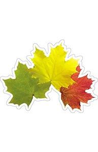 Плакат фигурный Мини Осень.Кленовые листья    10-10.02-0026