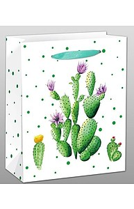 Пакет бумажный 18х23х10 Кактус с цветочками   ППД-9611