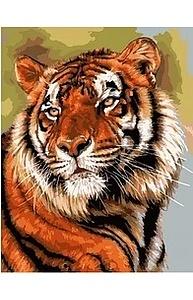 Холст с красками 40х50см Грациозный тигр МСА635