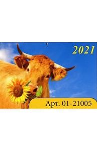 Календарь 2021 квартальный (315*640) Символ года  01-21005